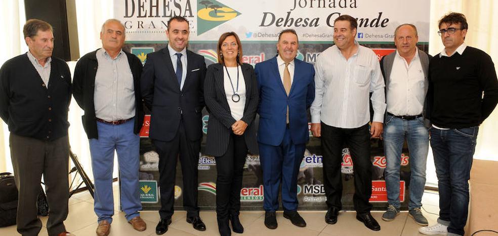 Salamanca exportó más de 5.500 animales a terceros hasta septiembre
