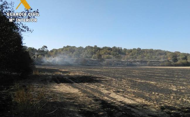 Investigado el presunto autor de un incendio forestal en Villosilla