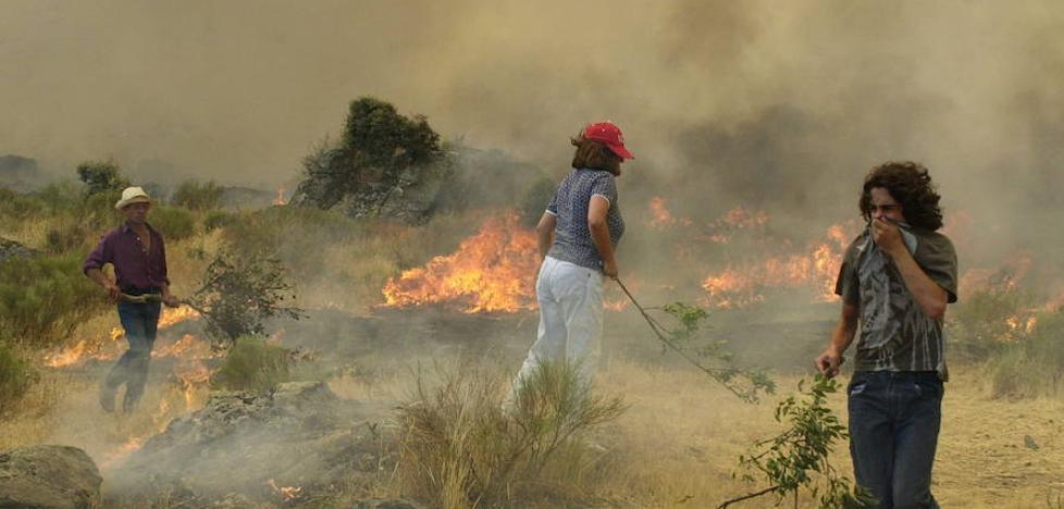 La Guardia Civil detuvo a 23 personas por causar incendios forestales
