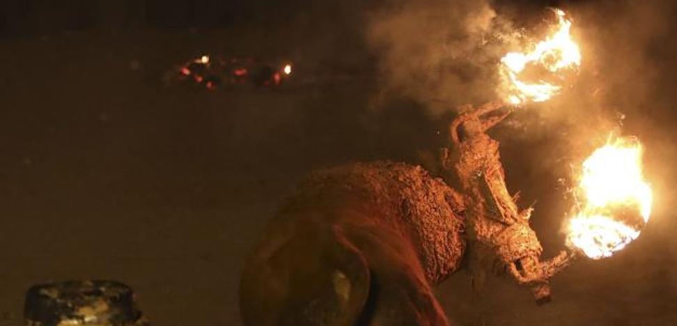 Ocho denunciados por tenencia de droga y desórdenes en toro jubilo en Soria