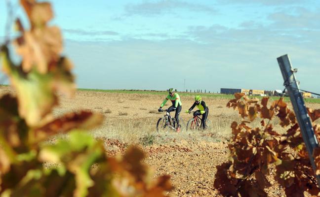 Una nueva ruta a caballo conectará Medina, La Seca y Rueda