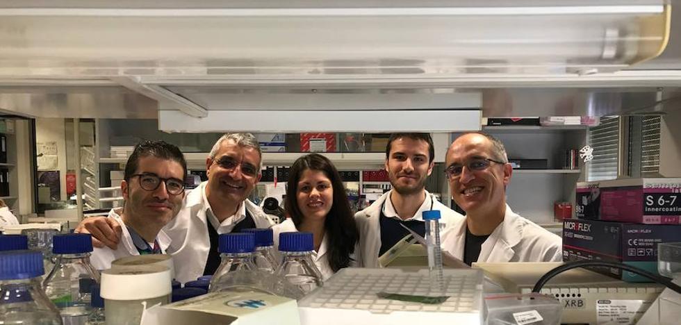 Investigadores de Salamanca Identifican un mecanismo que frena el avance del tumor pediátrico más frecuente