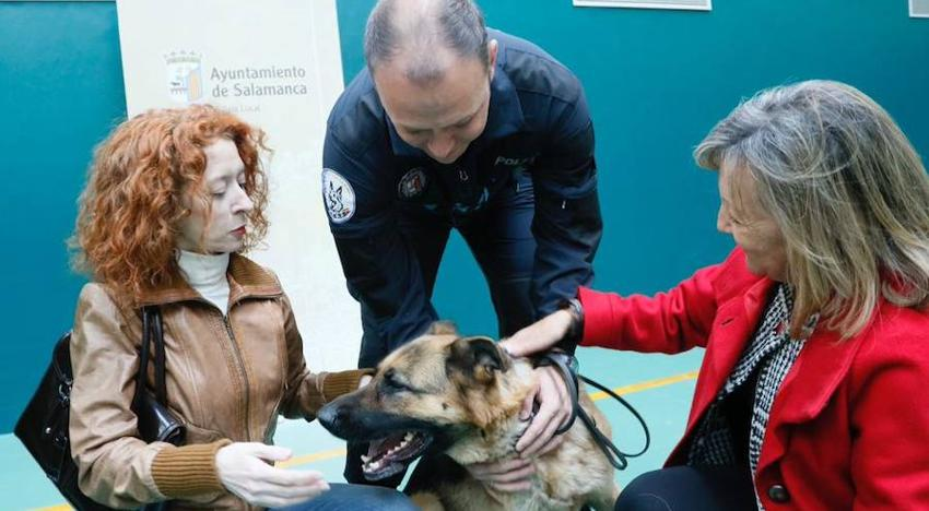 Salamanca apoya y protege a víctimas de violencia de género con perros
