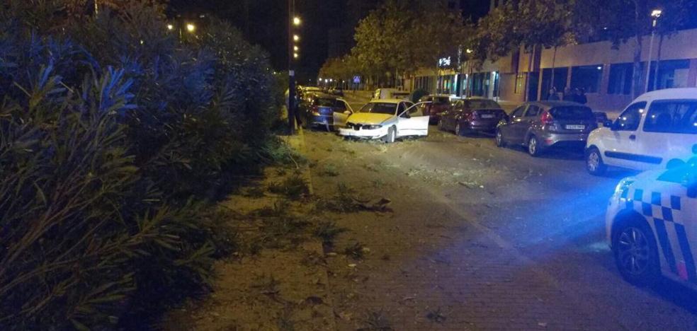 Un conductor destroza dos vehículos aparcados y diez metros de adelfas en Valladolid