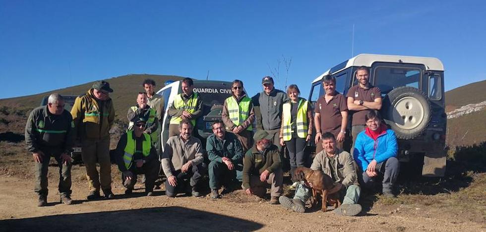 Sin rastro del oso al que dispararon en Palencia