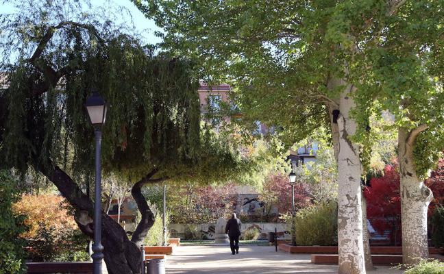 Un jardín urbano con fines medicinales