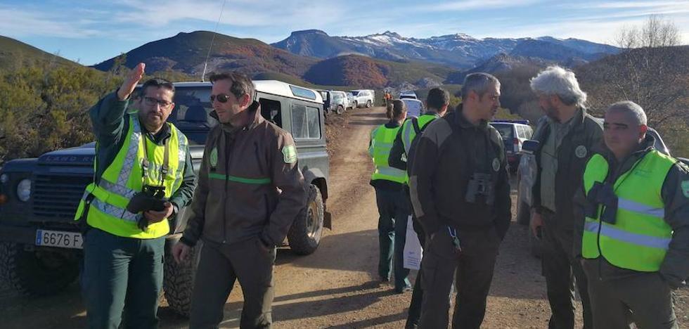 El PSOE pide que se incrementen las medidas de protección para los osos