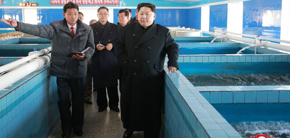 Corea del Norte dispara un nuevo misil balístico