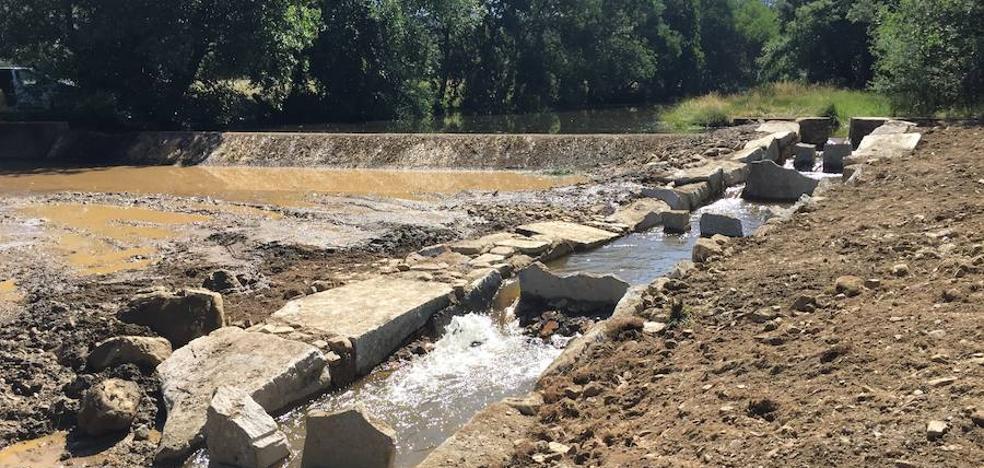 Crean una veintena de rampas para los peces en los ríos de la provincia