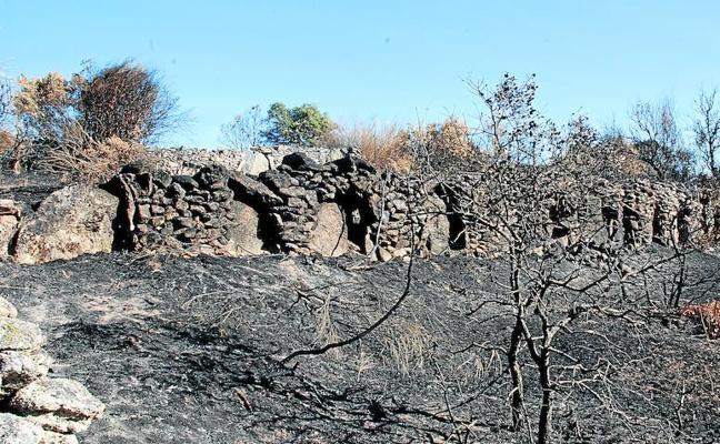 Los ángeles de la guarda del patrimonio en Castilla y León