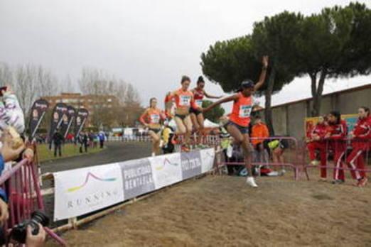 Treinta y ocho años al frente del atletismo de Castilla y León