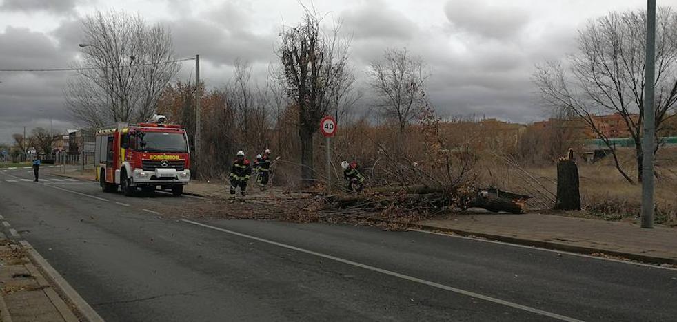 'Ana' tira árboles y farolas con vientos de 137 kilómetros por hora en La Covatilla