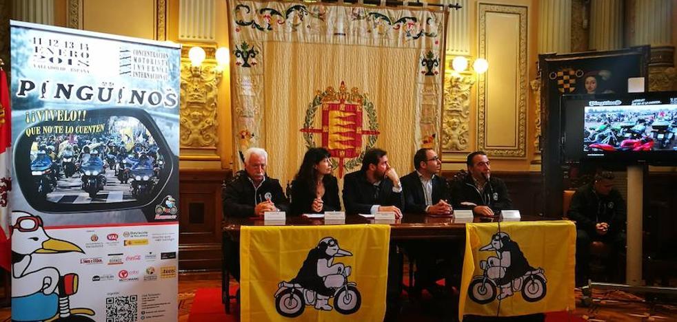 Valladolid invierte 30.000 euros en mejorar la sede definitiva de Pingüinos