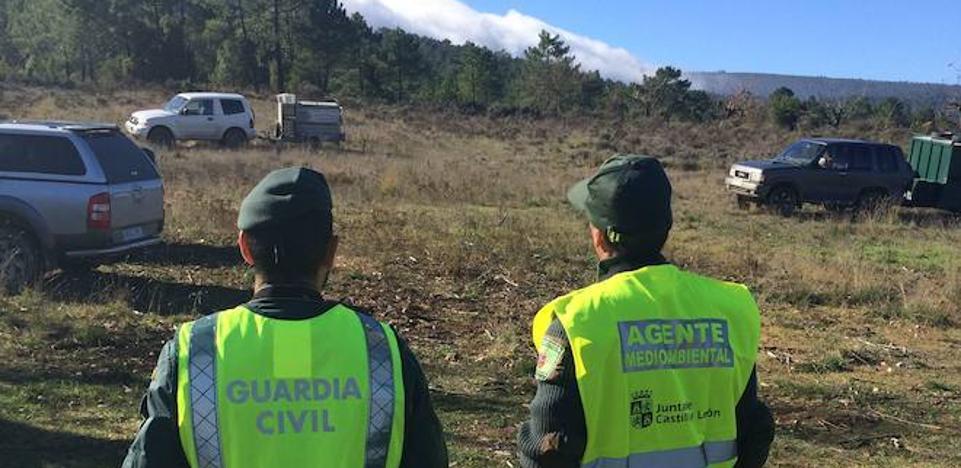 Un millar de firmas en veinte horas contra la supresión del Seprona en Ayllón