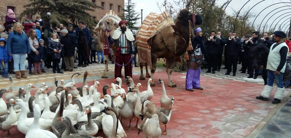 Medina del Campo pone en marcha un protocolo para la Cabalgata de Reyes