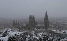 La nieve y las rachas de viento han derribado algunos árboles en Burgos