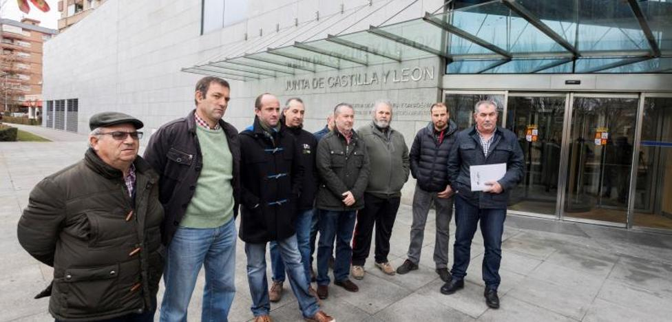 El sector del ovino se manifestará el jueves para exigir precios justos que cubran la producción de leche