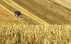 Consulta los programas de las organizaciones que se enfrentan en las elecciones agrarias en Castilla y León