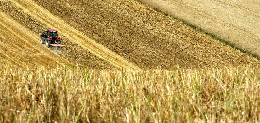Tres formas de ver la agricultura y ganadería de Castilla y León
