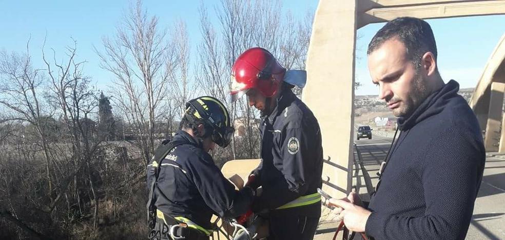 Los bomberos de Peñafiel rescatan un cachorro arrojado por un puente del río Duero