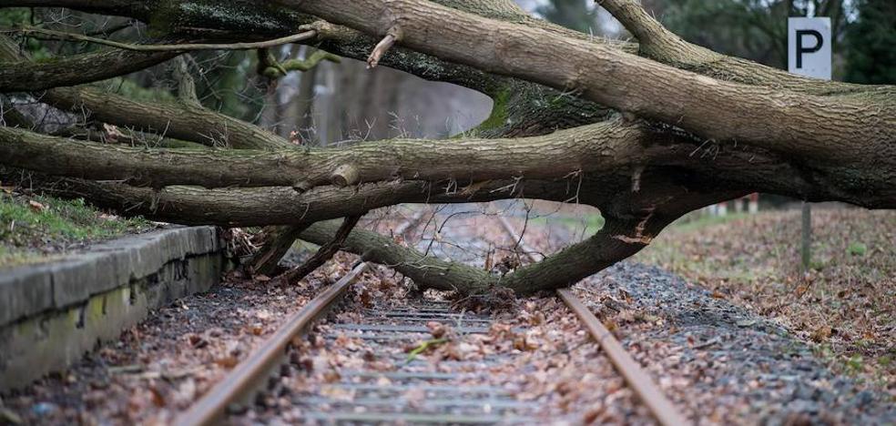 El temporal causa ocho muertos en Europa y paraliza el tráfico ferroviario alemán
