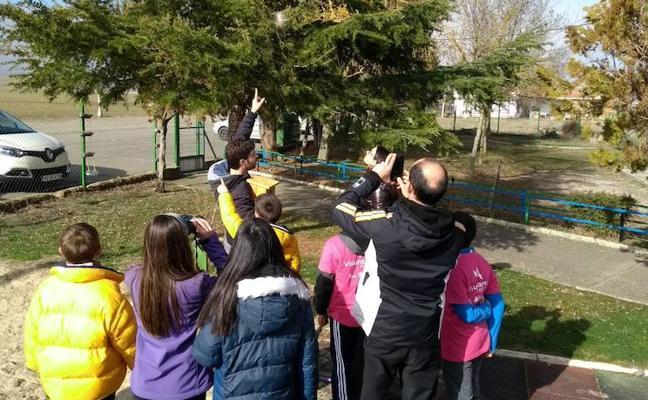 Los alumnos de la Valdavia participan en actividades de voluntariado ambiental