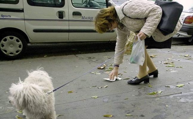 Segovia reforzará la vigilancia para evitar heces de perros en las calles