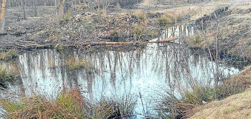 Las filtraciones en el terreno de la futura planta de Aldeanueva agravan la preocupación vecinal