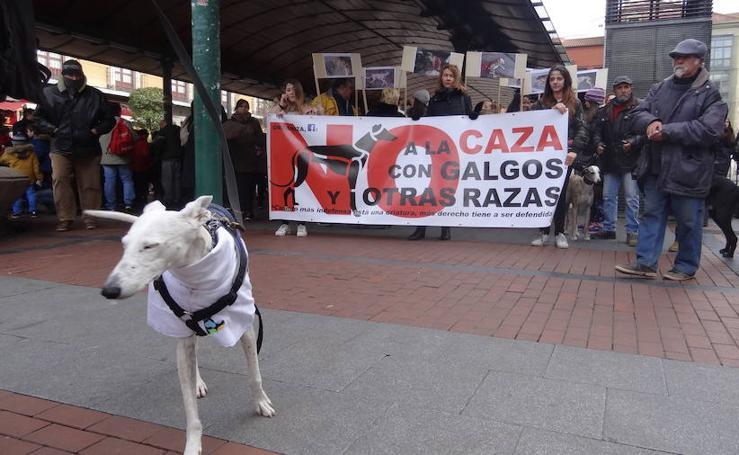 Manifestación organizada con lema No A la Caza