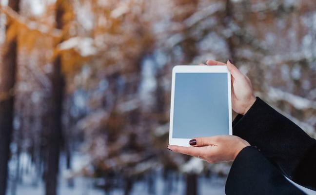 Las tablets siguen sin gustar al mercado