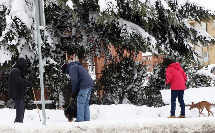 La nieve y el hielo permancen en Segovia