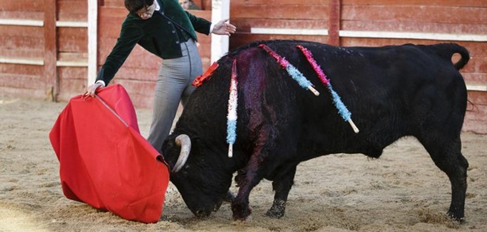 Cruz Roja atiende a ocho personas durante el sábado del Carnaval del Toro en Ciudad Rodrigo