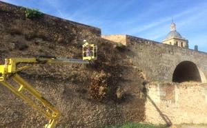 Herida al caerse desde lo alto de la muralla de Ciudad Rodrigo