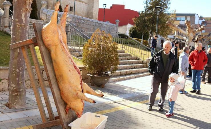 Fiesta de la Matanza en Villamuriel