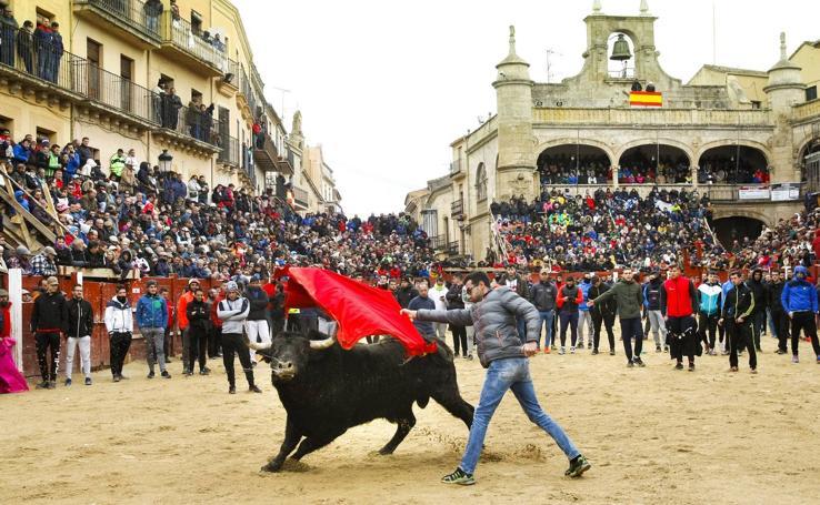 Jornada del martes en el Carnaval del Toro en Ciudad Rodrigo