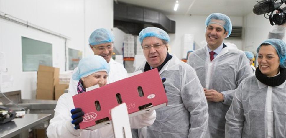 Castilla y León lidera la producción de queso con uno de cada tres productos de España
