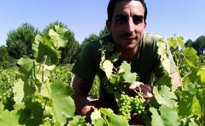 Un 'crowfunding' vitivinícola para luchar contra la despoblación rural en Adrados