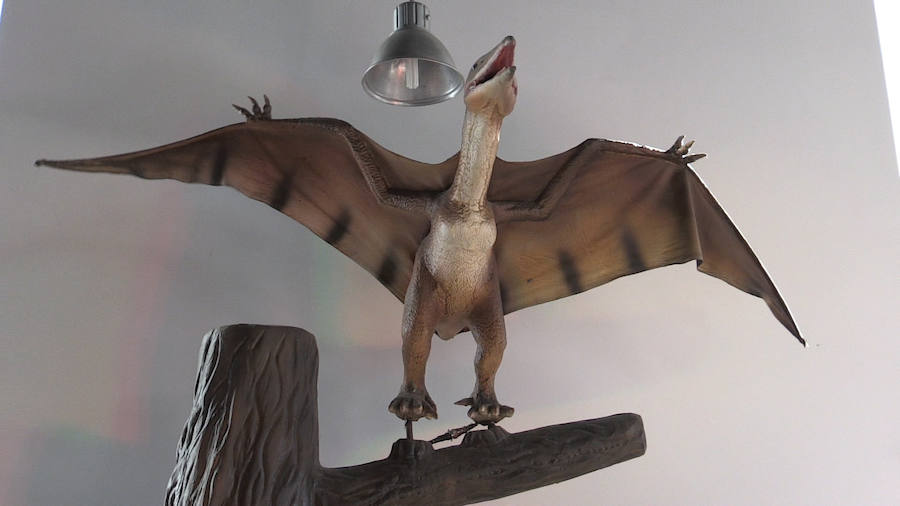 Exposición sobre dinosaurios en León