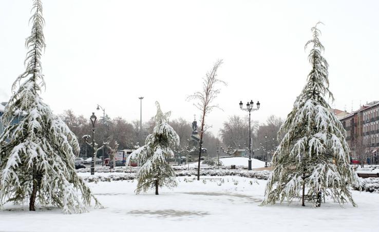 Las bellas estampas que la nieve ha dejado en Valladolid