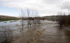 El Tormes y el Águeda anegan riberas en varias zonas de la provincia