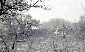 Apagar el incendio que se declaró el pasado verano en Fermoselle costó más de un millón de euros