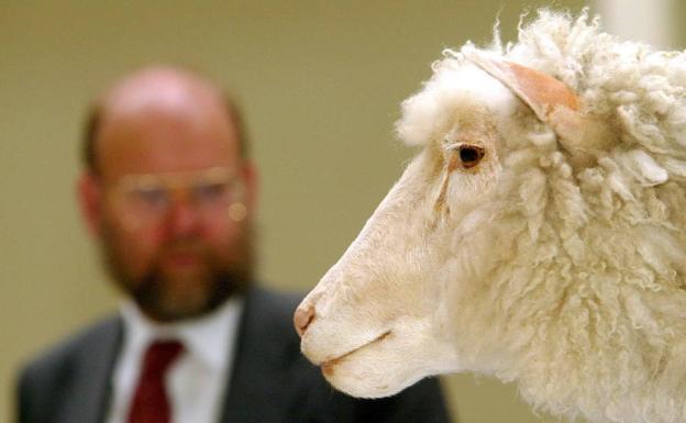 Cuerpo de la oveja Dolly expuesto en el Museo Nacional de Edimburgo./Maurice-Mcdonald/EFE.