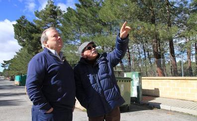 La procesionaria amenaza el futuro de las urbanizaciones de Marugán