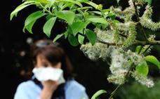 La contaminación y el cambio climático duplican los alérgicos al polen