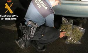 Investigados tres jóvenes de la Valdavia por el cultivo de marihuana