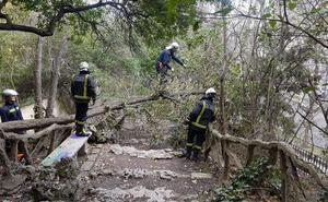 Los bomberos de Valladolid realizan 10 intervenciones por el viento