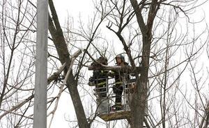 El viento obliga a los Bomberos a actuar en numerosas incidencias en Palencia