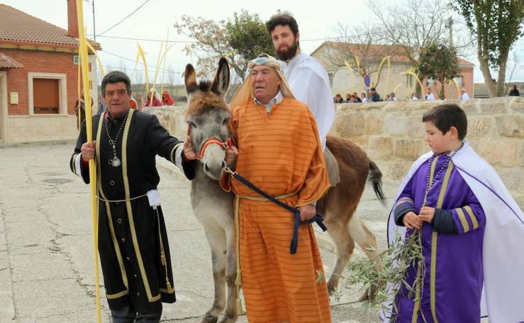 Procesión de Domingo de Ramos en Baltanás