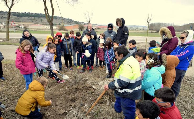Los escolares de Baltanás celebran el Día del Árbol
