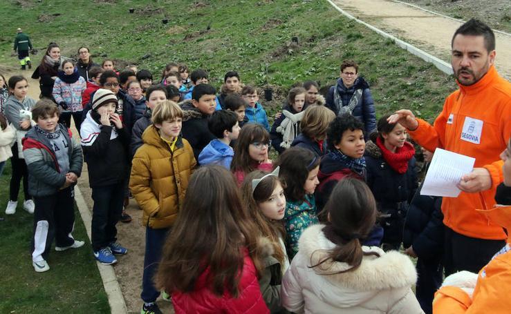 Plantación de árboles de los alumnos del colegio Fray Juan de la Cruz